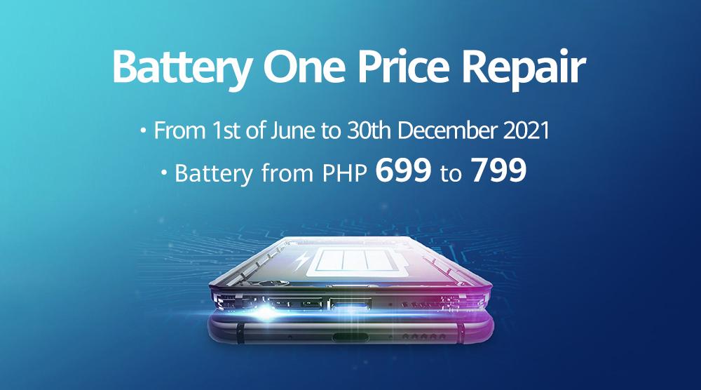 Battery One Price Repair