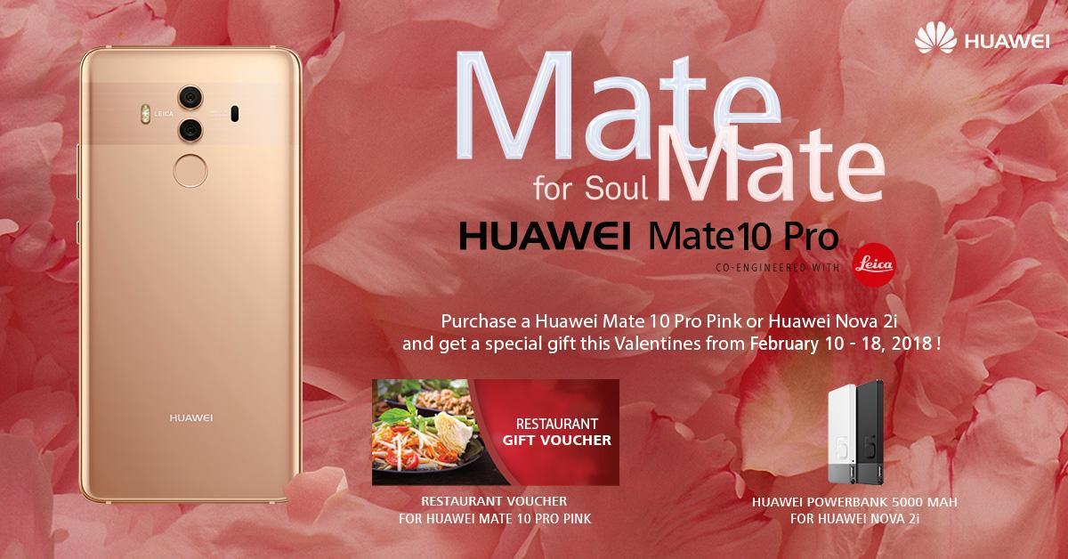 Mate for SoulMATE Valentine's Promo